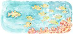Hello, fish! : Kang Ha yeon
