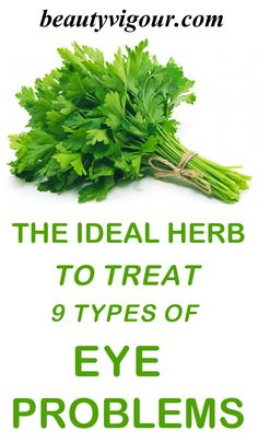The Ideal Herb To Treat 9 Types Of Eye Problems-Parsley