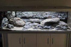 Pretty cool base to the aquatic portion of my future vivarium. Cichlid Aquarium, Aquarium Aquascape, Aquascaping, Aquarium Terrarium, Diy Aquarium, Aquarium Design, Reptile Room, Reptile Cage, Reptile Enclosure