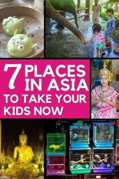 Best places to visit in Asia with kids whether you seek a city or beach experience in Hong Kong, Singapore, Vietnam, Thailand, Malaysia, or Bali.