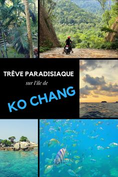 Après plusieurs échanges avec des voyageurs, la lecture de quelques guides de voyages glanés sur notre chemin, nous décidons de nous rendre à Koh Chang (l'île aux éléphants appelé ainsi du fait de sa forme), la deuxième plus grande île de Thaïlande située à 310km de Bangkok et qui serait encore préservée du tourisme de masse. Nous n'avons pas été déçu !