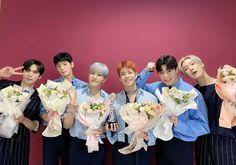 Astro Fandom Name, Cha Eun Woo Astro, Blue Flames, Stay Happy, Kpop, Bridesmaid Dresses, Wedding Dresses, Minhyuk, Boy Groups