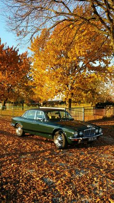 Jaguar xj6 4.2l British Racing Green #jaguarvintagecars