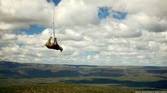 'Rinocerontes estão sendo mortos, seus chifres arrancados e os animais são deixados para sangrar até morrer, tudo pelo uso fútil dos chifres como cura para ressaca', afirmou Sabri Zain, da TRAFFIC. Acima, um rinocerante sendo transportado para uma nova reserva, como parte do programa de conservação da WWF. Foto: WWF