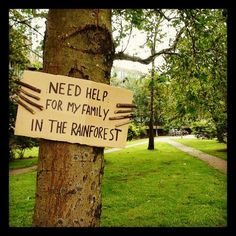 #treehugger #rainforest #trees #awareness (Taken...   RECORDBREAKIN'