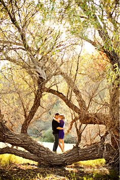 Engagement photos. Cute outdoor and hunnie loves these trees!! Perfect!!!