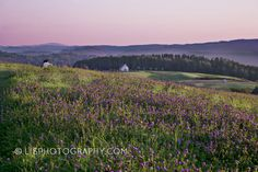 Wildflower Inn, VT by Elisabete Companion on Capture My Vermont // The most beautiful and peaceful sunset ever!
