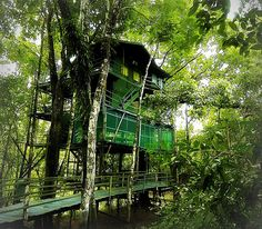 Ariau Amazon Towers Hotel, Brazil | 10 Places You Need To Visit Once In YourLife