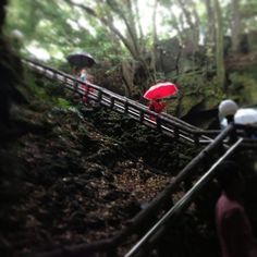 Going down to the lava caves on jeju #volcano #island