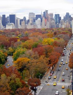NYC. Autumn Central Park looking South from West Side
