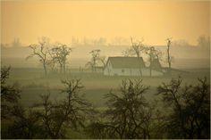 SALAŠ,  a farm in Vojvodina, Serbia