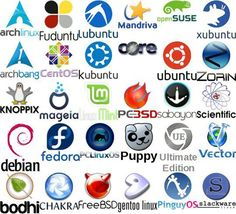 As a beginner, if you are getting confused about which Linux-based operating systems you should. Microsoft Software, Software Apps, Linux Mint, Puppy Linux, Cloud Computing Technology, Video Game Magazines, Desktop Environment, Gnu Linux, Vape Tricks