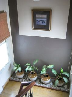 23 Ideas home interior design plants for 2019 Home Entrance Decor, House Entrance, Entryway Decor, Entryway Stairs, Entryway Ideas, Balcony Decoration, Indian Room Decor, Ethnic Home Decor, Diy Furniture Arrangement