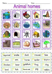 Animal Home Matching Worksheet - I would allow my students to get into partners, cut these pictures and words out, and then quiz each other in order to assess the knowledge of animal homes.