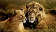 Pride Of Africa - Lion & Lioness by Michael Jackson, Wildlife Painting for sale., Buy-FineArt.com
