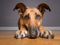 We spent the whole day by Elke Vogelsang on 500px