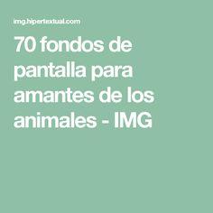 70 fondos de pantalla para amantes de los animales - IMG