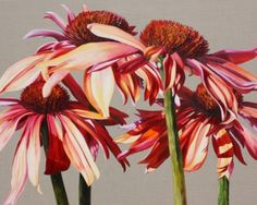 Flower Paintings by Sarah Caswell | Rhumba Cones