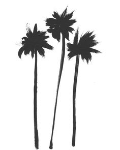 Three palms sway gracefully. This is a minimalist painting in acrylic...black and white.