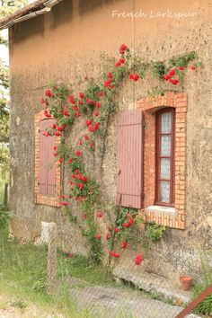 Charming old French stone house covered by roses