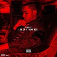 Lil Mouse ~ Life Of A Young Boss (Freestyle) by $Dorian_Dtm$ on SoundCloud