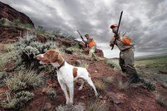 On alert. #Hunting #HDR