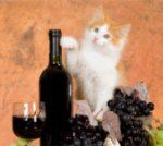 Friday Fourplay: Wine For Cats, America's First Trappist Brewery, Singapore's Charlie Brown Restaurant, and Absolut That Tastes Like Chicago