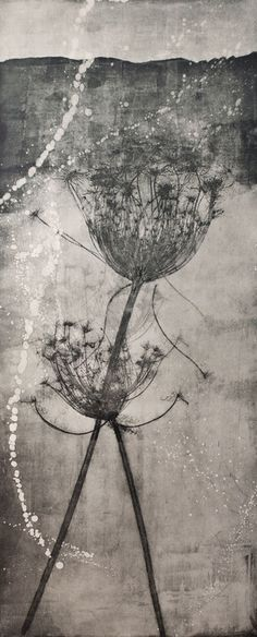 lapresquile: © Elisabetta Diamanti these seed heads are one of my favourite images, love what you did Collagraph, Cyanotype, Encaustic Art, Art Graphique, Botanical Art, Medium Art, Painting & Drawing, Printmaking, Street Art