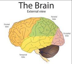 Vitamin b12 for brain fog