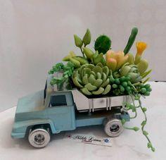 「suculentas y cactus en porc.fria」の画像検索結果