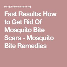Fast Results: How to Get Rid Of Mosquito Bite Scars - Mosquito Bite Remedies
