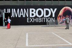 The Human Body Exhibition. dal 29/9/2012 al 13/1/2013 al Palaolimpico di #Torino
