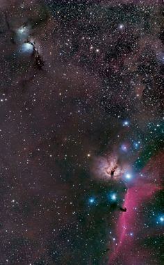Orion's Belt Continued
