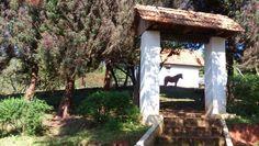 Campo Largo