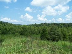 11.92 ACRES mostly wooded with Center Hill Lake and Sligo Boat Dock just a few minutes down the road. Pretty country setting and wet weather creek on property. Conveniently located to Hwy 70 Sparta and just 20 minutes from Cookeville.