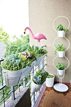 Balcony Succulent Garden Planters