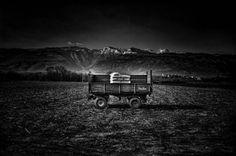 Cart by Luigi Esposito