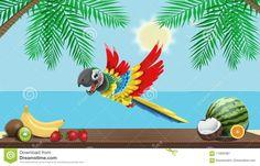Pappagallo Che Vuole Rubare La Frutta Illustrazione di Stock - Illustrazione di spiaggia, cielo: 115605381