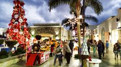 Rosarito, Fair Grounds, Christmas Tree, Holiday Decor, Travel, Home Decor, Teal Christmas Tree, Viajes, Holiday Tree