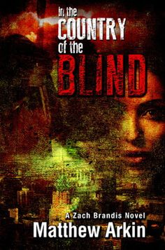 Pam's Book Reviews: In the Country of the Blind by Matthew Arkin