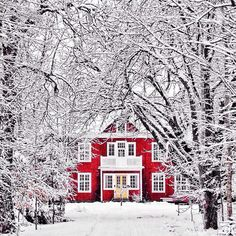 Winter magic - beautiful red house stands out in the snow. Such a winter wonderland! Winter Szenen, Winter Time, Winter Magic, Winter House, Dark Winter, Winter Colors, Noel Christmas, Winter Christmas, Magical Christmas