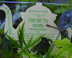 Lemon Mint Tea Seed Kit - Screen Tea, Inc.:  Lemon Mint Seed Kit with Vintage Silverware Garden Marker. This recycled paper teapot is embedded with lemon mint seeds that you can plant to start your own tea garden.