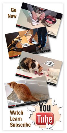 Cats need to chew. Cats' teeth are designed to rip and tear. Chewing on meaty bones is also a cat's natural toothbrush.