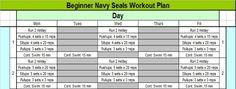 Navy SEALs workout pt. 1