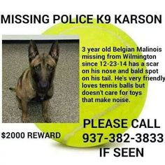 PLEASE SHARE PLEASE SHARE PLEASE SHARE PLEASE SHARE PLEASE SHARE PLEASE SHARE PLEASE SHARE PLEASE SHARE PLEASE SHARE The search is still on for K9 Karson. He is a K9 officer missing from Wilmington Ohio Please share this pic no matter where you are. You may have that one friend who finds him. I pray he's in the warm home of a loving family who just doesn't realize right now that his daddy misses him. If we share we can get the word out.