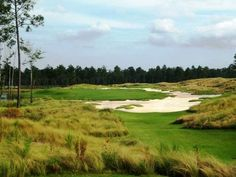 Brunswick Forest Wilmington Nc, Golf Courses