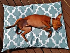 Your Choice of Fabric, Dog bed, Premier Prints Fynn, Large Dog Bed Cover, Designer Dog Bed Cover , Unique dog bed cover, soft dog bed cover by ILuvU4ever on Etsy