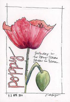 from my sketchbook ~ spring flowers