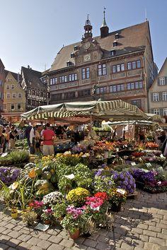 Tubingen, Baden-Württemberg, Germany