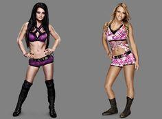 http://m.eonline.com/shows/total_divas/news/586613/wwe-superstar-cj-punk-s-wife-aj-lee-summer-rae-s-former-rival-layla-more-of-the-hottest-wwe-divas-see-the-pics  WWE Superstar CM Punk's Wife AJ Lee, Summer Rae's Former Rival Layla
